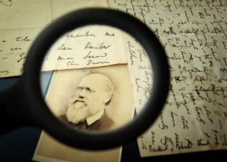 Religious America Snubs Darwin Film: Producer