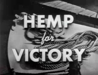 Kentucky Passes Hemp-Growing Bill
