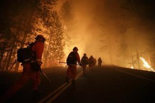 Rim Fire May Have Started on Illegal Pot Farm: Official