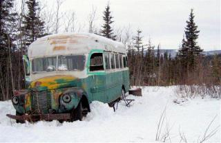 Into the Wild Author: This Is What Killed McCandless