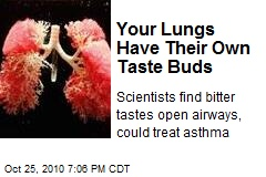 Your Lungs Have Their Own Taste Buds