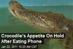 Crocodile's Appetite On Hold After Eating Phone