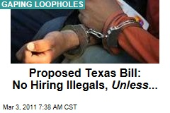 Proposed Texas Bill: No Hiring Illegal Immigrants ... Unless They're House Workers or Yard Workers