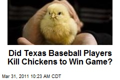 Did Texas Baseball Players Kill Chickens to Win Game?