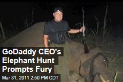 GoDaddy CEO Bob Parson's Elephant Hunt Video Prompts Fury