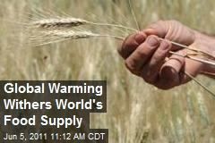 Global Warming Withers World's Food Supply