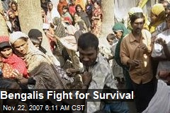 Bengalis Fight for Survival
