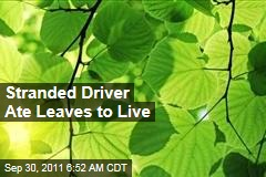 Stranded David Lavau Ate Leaves to Live