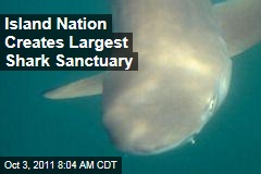 Marshall Islands Create Massive Shark Sanctuary
