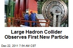 Large Hadron Collider Observes First New Particle