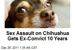 Sex Assault of Chihuahua Gets Con 10 Years