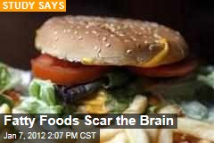 High-Fat Foods Scar Brain in Rodents: Study