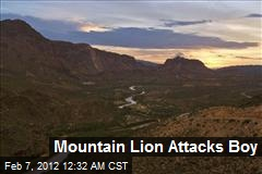 Mountain Lion Attacks Boy