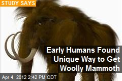 Early Humans Found Unique Way to Get Woolly Mammoth
