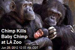 Chimp Kills Baby Chimp at LA Zoo