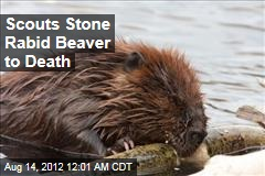 Scouts Stone Rabid Beaver to Death