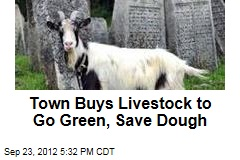 Town Buys Livestock to Go Green, Save Dough