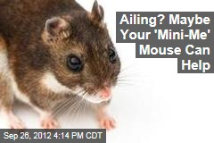 Ailing? Maybe Your 'Mini-Me' Mouse Can Help