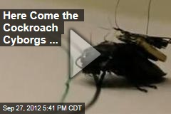 Here Come the Cockroach Cyborgs ...