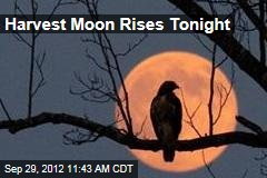 Harvest Moon Rises Tomorrow