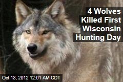 4 Wolves Killed First Wisconsin Hunting Day