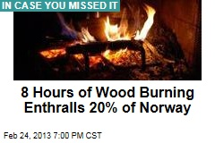 8 Hours of Wood Burning Enthralls 20% of Norway