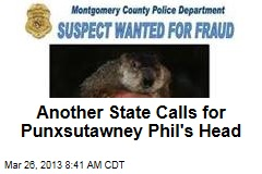 Another State Calls for Punxsutawney Phil's Head