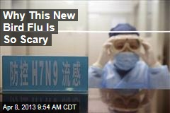 Why This New Bird Flu Is So Scary