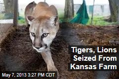 Tigers, Lions Seized From Kansas Farm