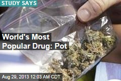 World's Most Popular Drug: Pot