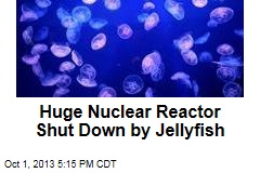 Huge Nuclear Reactor Shut Down by Jellyfish