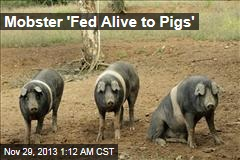 Mobster 'Fed Alive to Pigs'
