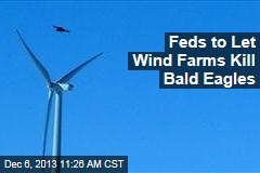 Feds to Let Wind Farms Kill Bald Eagles