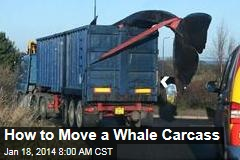 How to Move a Whale Carcass