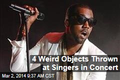 4 Weird Objects Thrown at Singers in Concert