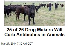 25 of 26 Drug Makers Agree to Curb Antibiotics in Meat
