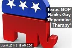 Texas GOP Backs Gay 'Reparative Therapy'