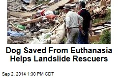Dog Saved From Euthanasia Helps Landslide Rescuers
