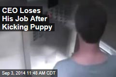 CEO Loses His Job After Kicking Puppy