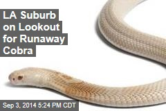 LA Suburb on Lookout for Runaway Cobra