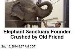 Elephant Sanctuary Founder Crushed by Old Friend