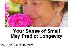 Your Sense of Smell May Predict Longevity