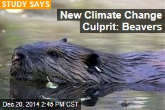 New Climate Change Culprit: Beavers