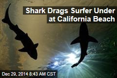 Shark Drags Surfer Under at California Beach
