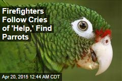 Firefighters Follow Cries of 'Help,' Find Parrots