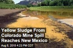 Yellow Sludge From Colorado Mine Spill Reaches New Mexico