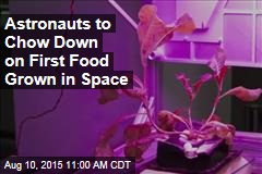 Astronauts to Chow Down on First Food Grown in Space