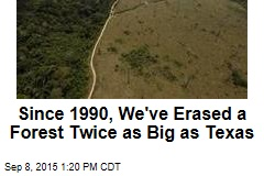 Since 1990, We've Erased a Forest Twice as Big as Texas