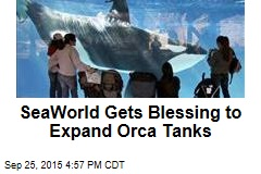 SeaWorld Gets Blessing to Expand Orca Tanks