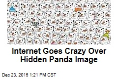 Internet Goes Crazy Over Hidden Panda Image
